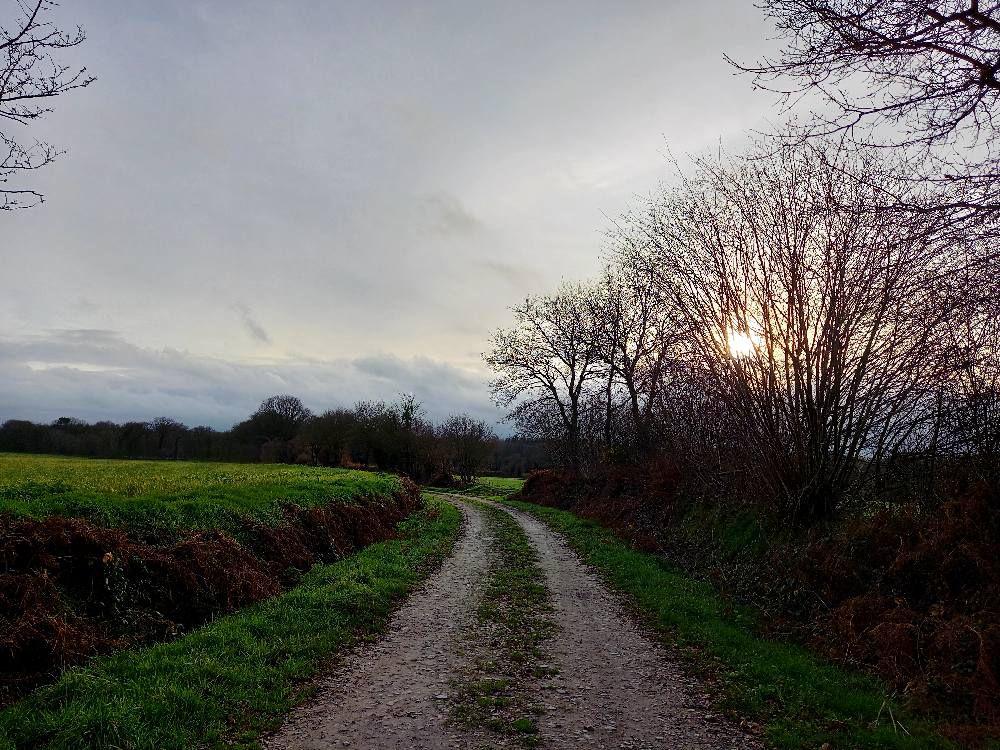 Instagram : Les Terres Froides
