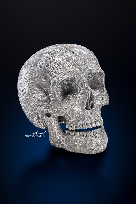 Crâne exceptionelle en Météorite