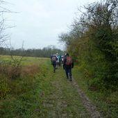 Randonnée de Mareil-sur-Mauldre à Villennes-sur-Seine - 20,5 km. - Carnets de r@ndos et de voy@ges...