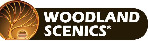 Le système de routes et chemins Woodland Scenics