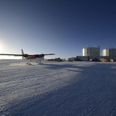 Les aventures d'Albane en Antarctique