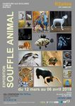 "Exposition ""SOUFFLE ANIMAL"""