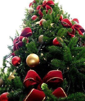 10 bonnes raisons de ne pas détester Noël
