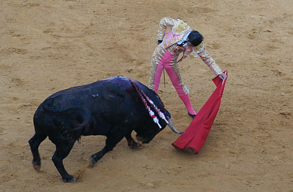 Album - 2012 / 09 - Toros-y-Salsa-corrida-de-Fuente-Ymbro