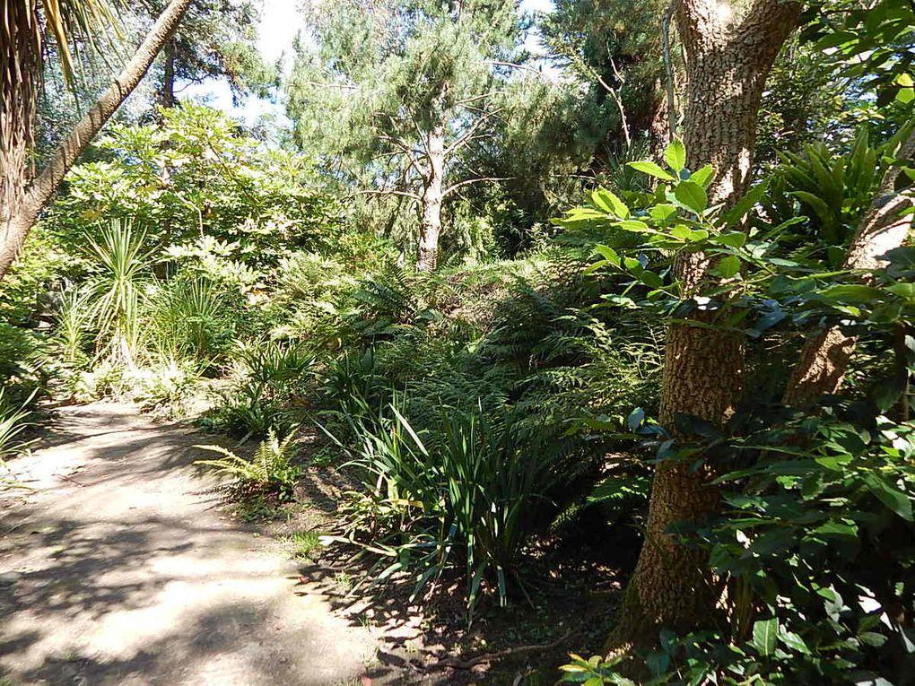 Cotentin: Le Jardin botanique de Vauville