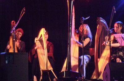 Formation AKDT 2014 : la harpe avec Maria Palatine