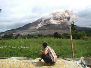 Sinabung - émissions de cendres le 11.06.2015 / 12h55 loc. à gauche, et à droite émission de cendres et coulée pyroclastique le 12.06.2015 / 10h46 loc. - photos endrolew@