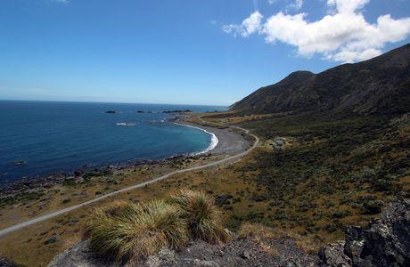 Cape Paliser