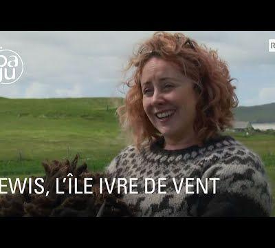 La vie sauvage de l'île Lewis au nord de l'Ecosse