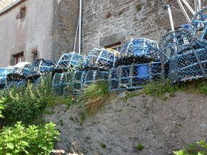 Nasses bleues sur fond gris en Bretagne, et grises sur fond bleu au Sénégal