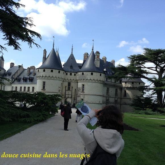 Promenade au pays du Selles-sur-Cher