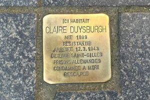 Duysburgh Claire