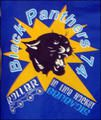 Bienvenue sur le blog des Black Panthers de Saint Julien-en-Genevois