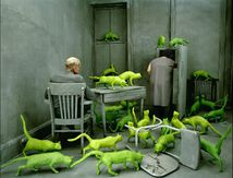 Analyse - Photo de Sandy Skoglund