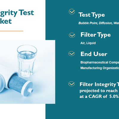Filter Integrity Test Market Worth USD 79 million by 2024 (At a CAGR of 5.0%)