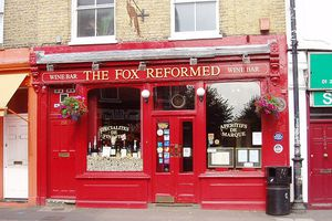 THE FOX REFORMED