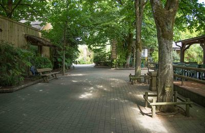 Visite du zoo de la flèche ( Sarthe)