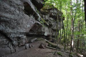 Sentier nature du Loosthal (La Petite Pierre)