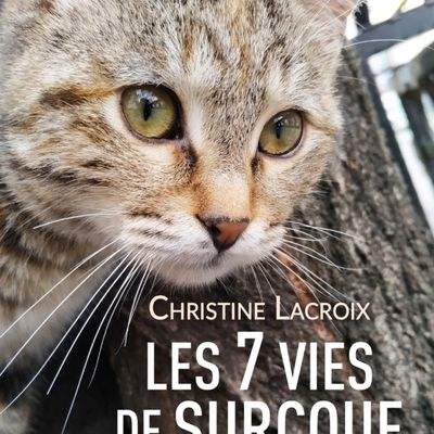 MA RENTREE LITTERAIRE : LES 7 VIES DE SURCOUF de Christine LACROIX