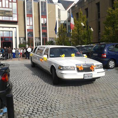 dom'limousine