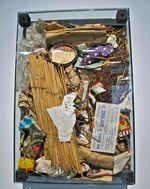 Art et pédagogie: les ordures artistiques d'Arman, les ordures pédagogiques du Musée d'Histoire Naturelle