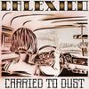 CALEXICO : Carried to Dust (chronique, 2008)