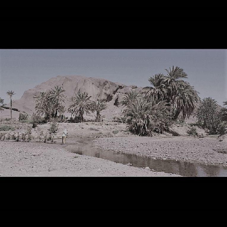 """L'oasis de Fint """"mon beau paradis"""" Album photos"""