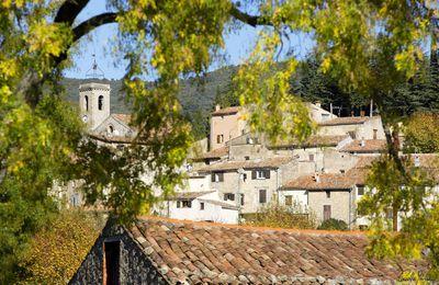 #CouleursAutomne #dracenie #provence #verdon