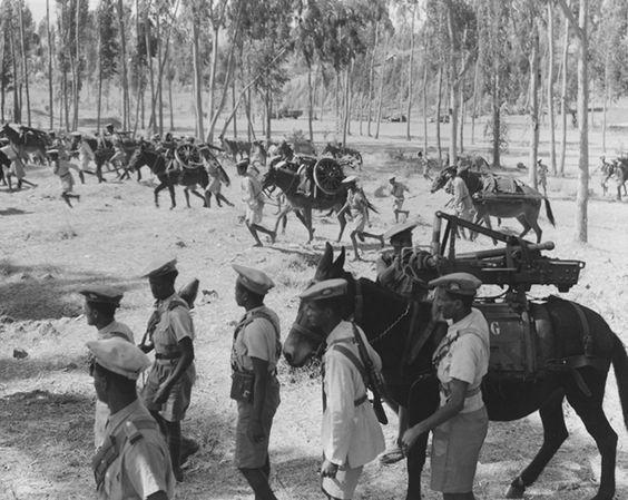 Ethiopie 1935-1939 - Laurent Gaudé - Malaparte