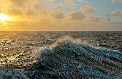 Souvenir en haute mer