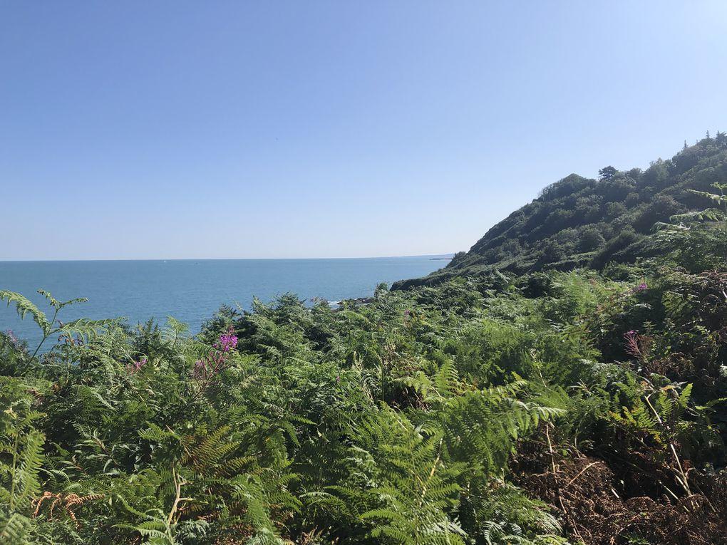 Randonnée boucle au départ de Gruchy - Cotentin.
