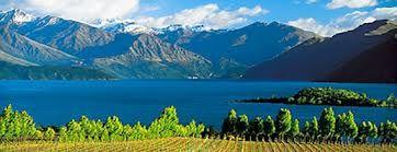La Viticulture en nouvelle Zélande