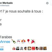 Racistes, islamophobes, complotistes, voici les comptes que suit Marine Le Pen sur Twitter