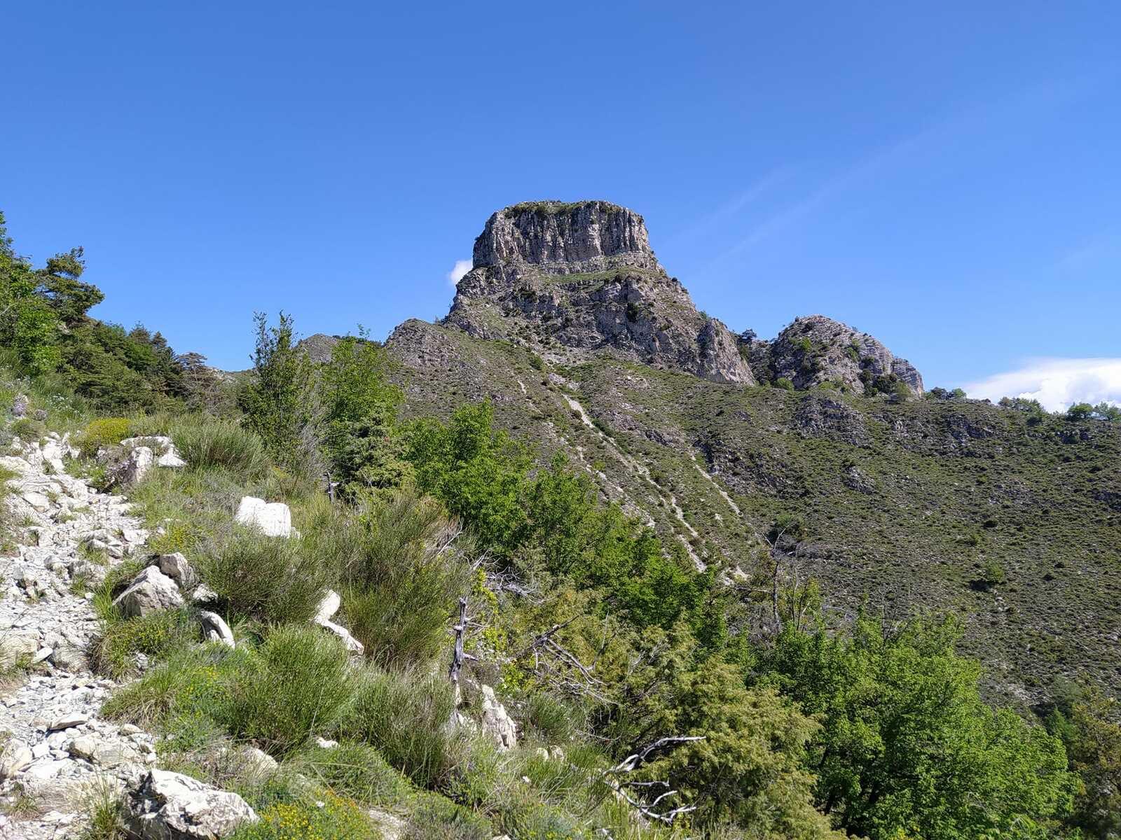 Castel Ginesté