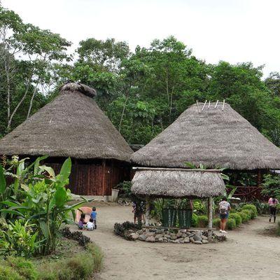 Souvenirs d'Amazonie
