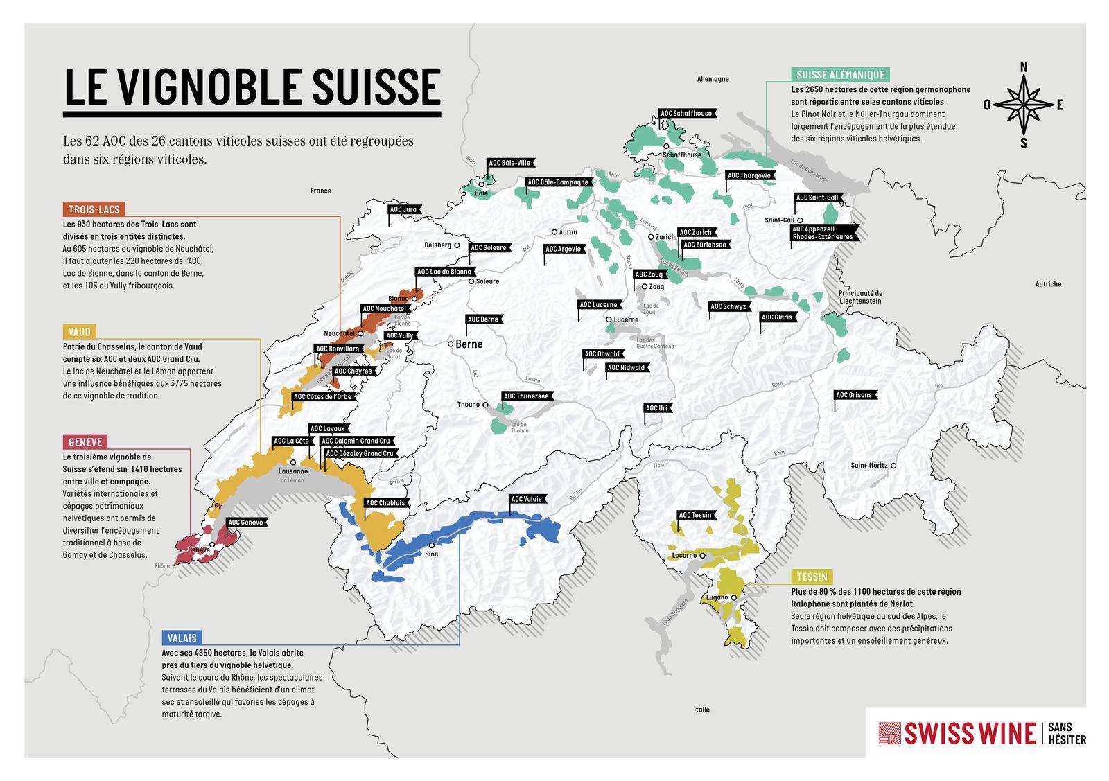Le Vignoble Suisse : Tour d'horizon d'un pays viticole méconnu