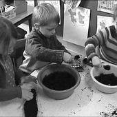 Semer des graines | Le site de la Fondation La main à la pâte
