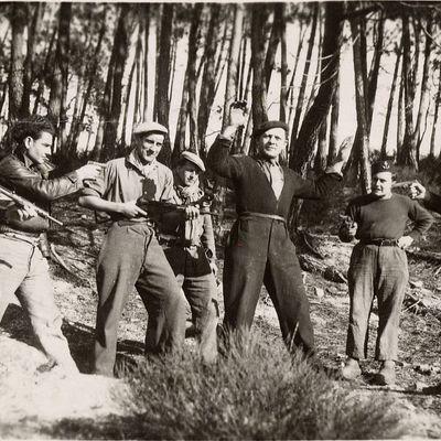 Les Francs-Tireurs et Partisans Français : organisation locale