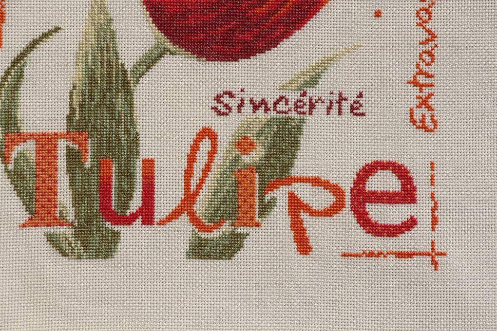 Tulipe de Lili points