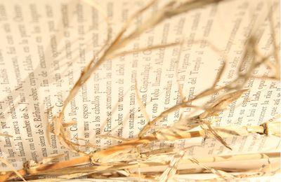 Monte Libros Chaco