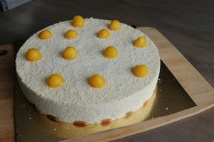 Entremet exotique - Mangue/Coco/chocolat blanc