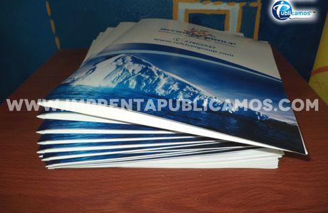 Diseño e impresión de Carpetas Corporativas para Refriser