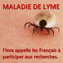 Maladie de Lyme (tiques) : une application smartphone pour une approche participative