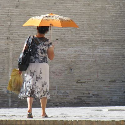 Parapluie orange