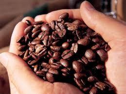 Colheita de café estimada em 17 mil toneladas no país