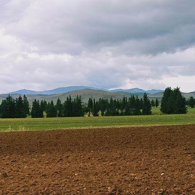 Paysage rural. منظر من ريف الهاشمية