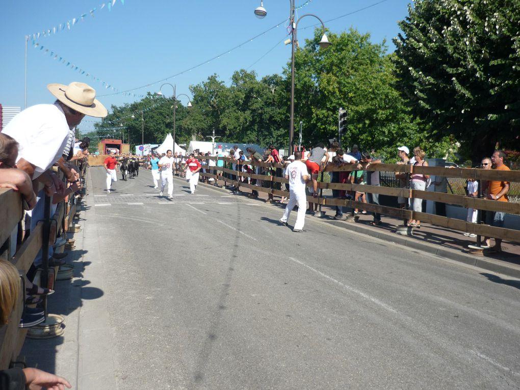 2010 - RION DES LANDES