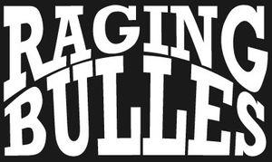 Raging Bulles à Toulon - 22 janvier 2015