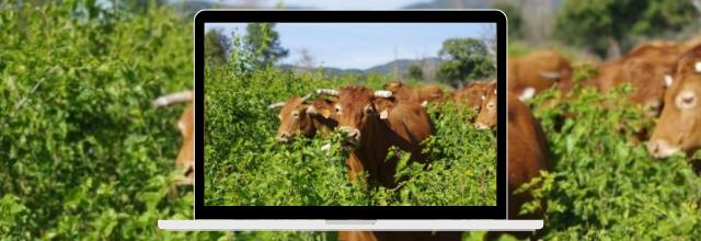 A la rencontre des agriculteurs qui innovent le 1er septembre à Mirepoix (Ariège)