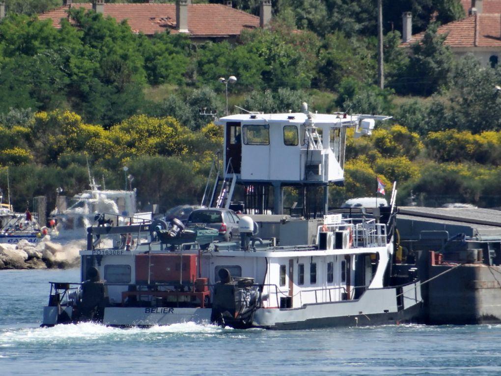 BELIER , remorqueur / pousseur , au passage de port de Bouc vers Martigues le 24 juin 2015